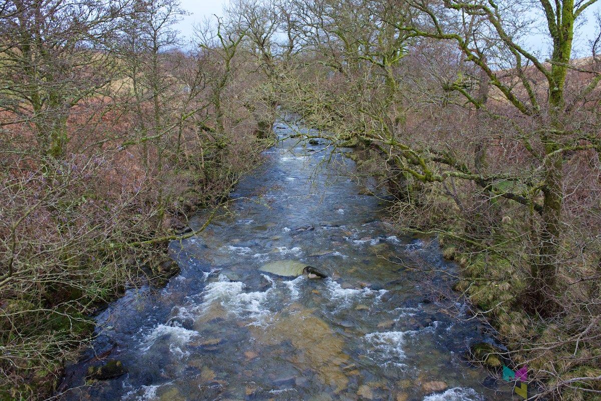 Scottish-Border-Region-RCH_1306