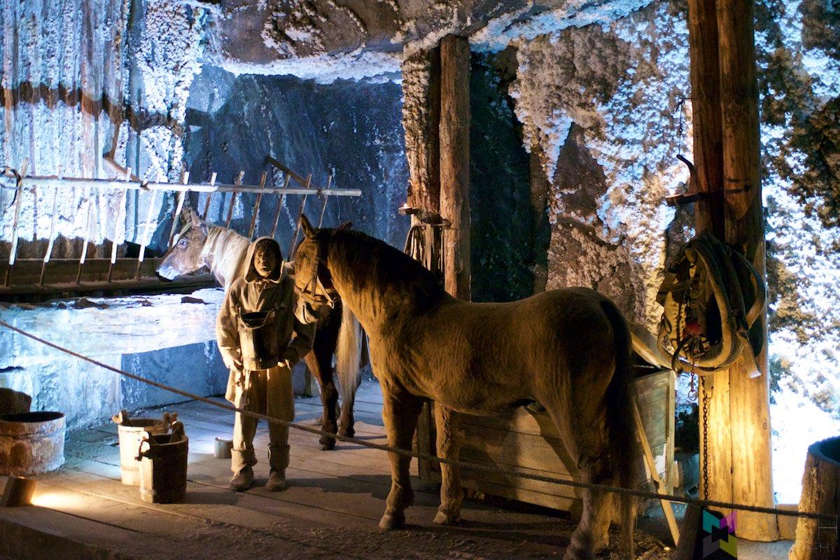 Wieliczka-Salt-Mine-RCH_1449
