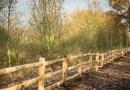 Boomhut XXL met duurzaam hout van Van Vliet Kastanjehout