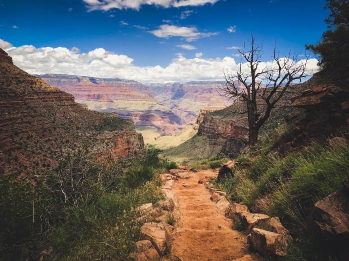 Best Hiking Trails in Arizona
