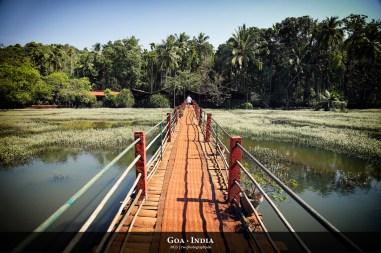 Goa/ Indien
