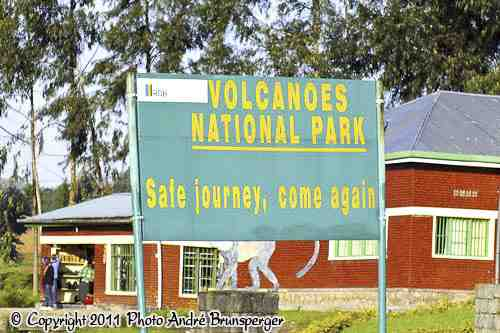 Parc des volcans - circuit safari 8 jours Rwanda