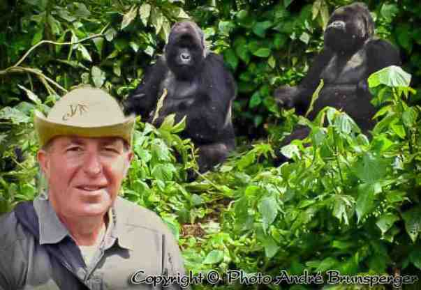 André avec les Gorilles des montagnes Rwanda Ouganda