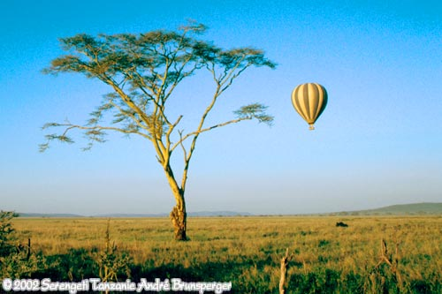 Montgolfière dans le Serengeti en Tanzanie - Nos safaris en Tanzanie