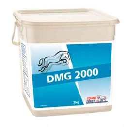 Equine Products DMG 2000 voor je sportpaard