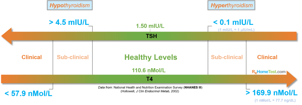 image: Thyroid hormones healthy levels