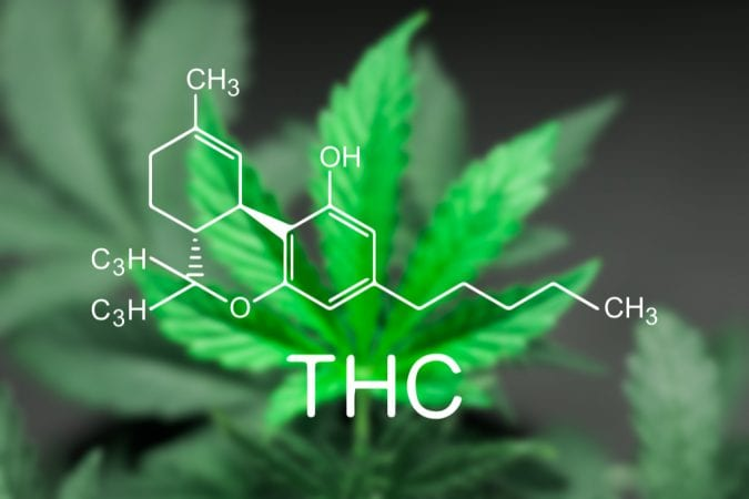 THC chemical structure over a cannabis leaf