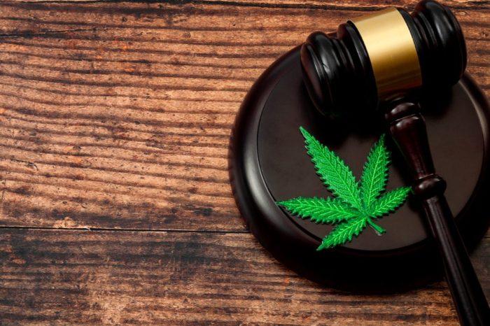 decriminalize represented by leaf on gavel