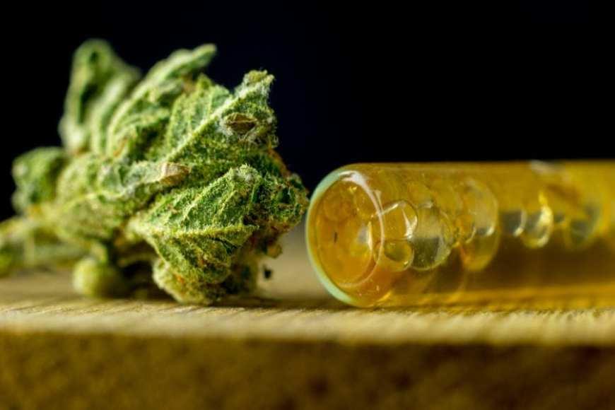 cannabis medicine is good for injured brain