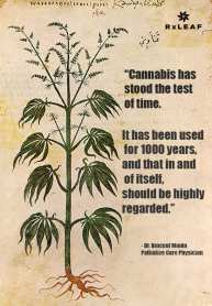 history of medical cannabis represented by picture of cannabis on scroll