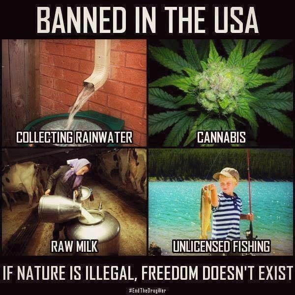 Banned in the USA meme