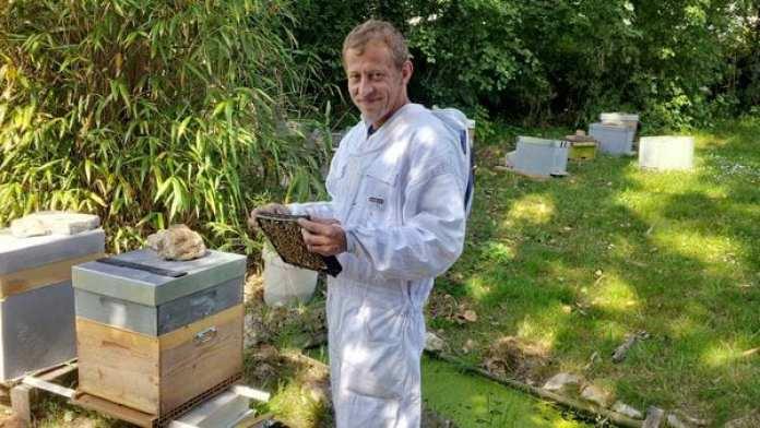Nicholas Trainerbee tending to a hive