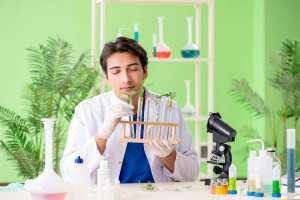 cannabis, analytics, data, mid-grade, pricing, quality, recreational cannabis, medical cannabis, cannabis dispensaries, USA, Canada