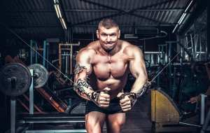 body builders, muscle building, CBG, cannabinoids, cannabis, cannabis extracts, muscle loss, research, muscle mass, exercise