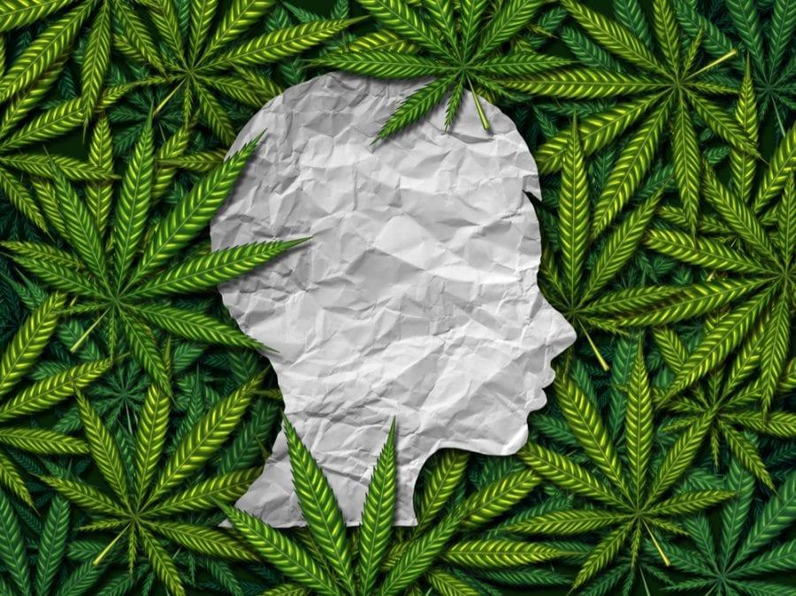 cannabis, Epidiolex, CBD, THC, CBD extract, pediatric epilepsy, seizures, FDA-approved, legalization, USA