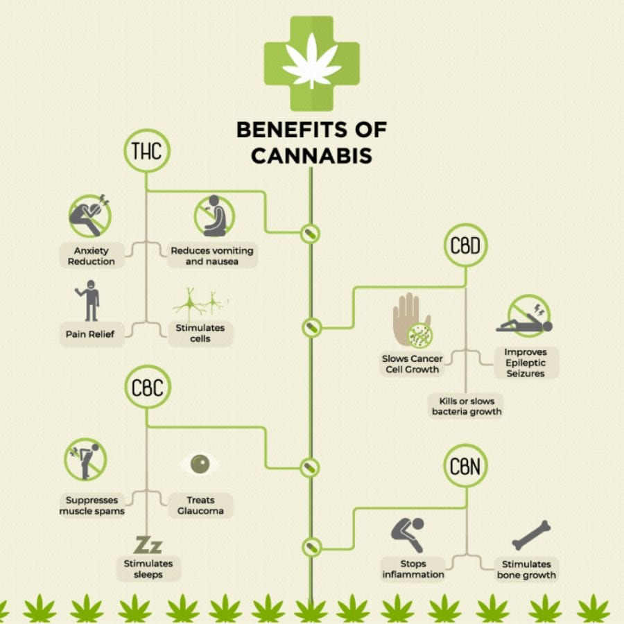 cannabis, cannabinoids, medical cannabis, recreational cannabis, CBD, THC, legalization, cannabis benefits, alcohol, intoxication, health risks