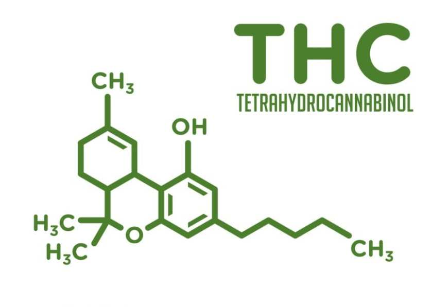 THC chemical drawing, as discovered by Mechoulam