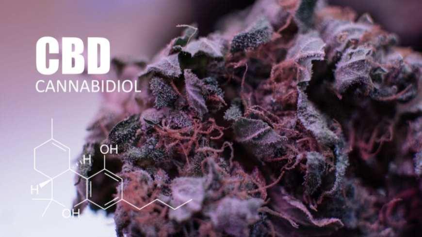 cannabidiol isolate chemical makeup