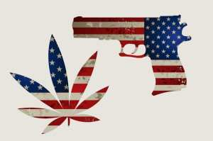 cannabis, USA, legalization, recreational cannabis, medical cannabis, federal law, second amendment, gun ownership, gun license, insurance, employment