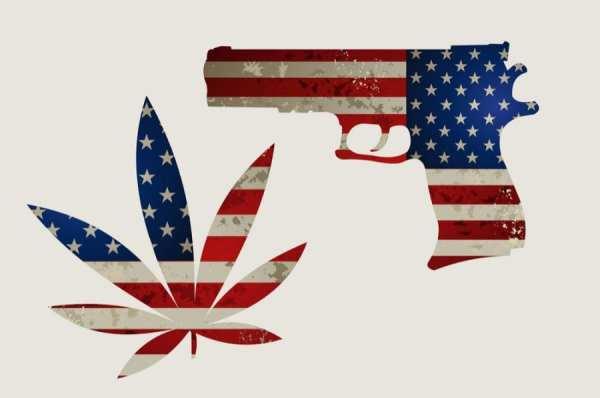 cannabis, USA, legalization, recreational cannabis, medical cannabis, federal law, second amendment, gun ownership, gun license, insurance, employment
