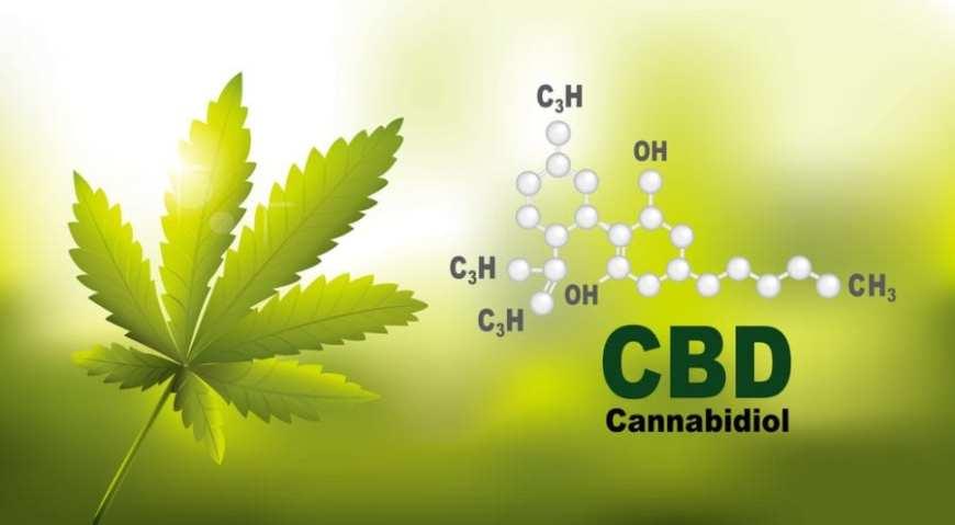 cannabis, CBD, smoking, cigarettes, research, nicotine, addiction, USA, legalization, depression, rehabilitation