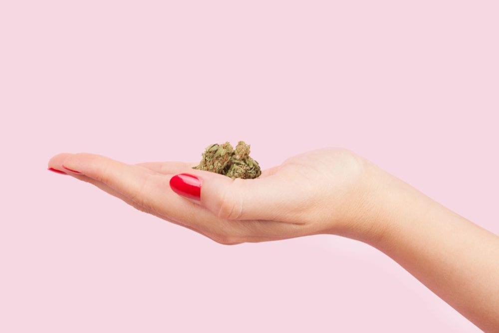 cannabis, women, women's health, tampons, cannabis tampons, harvard, THC, CBD, pain, pain relief, menstrual cramps, menstruation