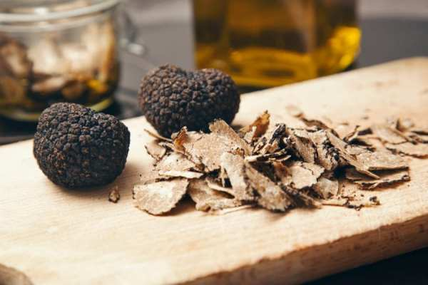 cannabis, black truffles, cannabinoids, phytocannabinoids, endocannabinoid system, Canada, USA, legalization, THC, CBD
