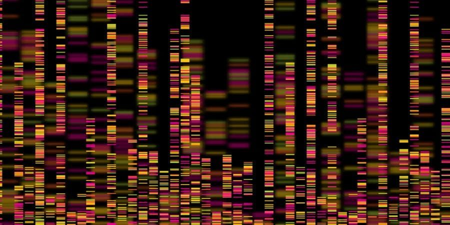Bars of genetic code representing mapping the cannabis genome