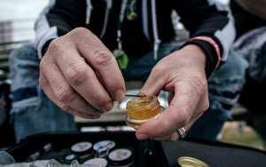 cannabis, terpenes, research, medical cannabis, recreational cannabis, dispensary, retailers, Canada, USA, strains, cannabinoids