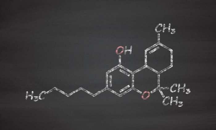 cannabis, THC, delta-9-THC, CBD, molecules, cannabinoids, chemical structure, research, health benefits, endocannabinoid system