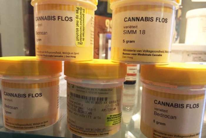 cannabis museum old flos