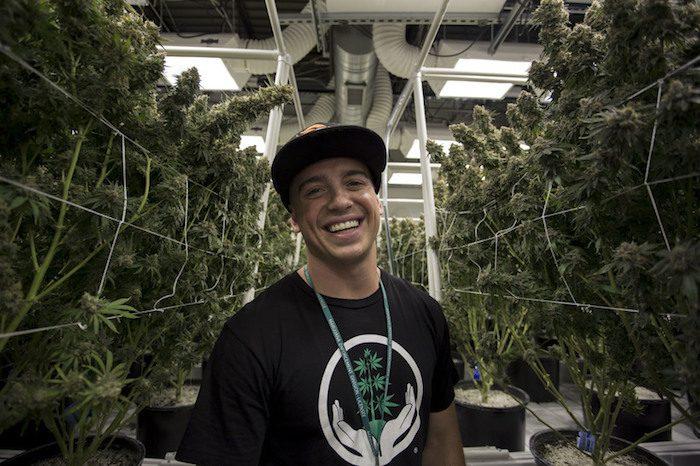 weed millionaire, Joshua Haupt, cannabis, epilepsy, seizures, CBD, THC, cannabinoids, alternative medicine, pharmaceuticals, grow op, Colorado