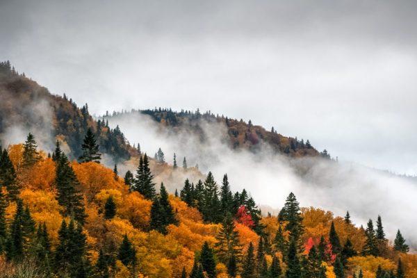 quebec hills wreathed in mist