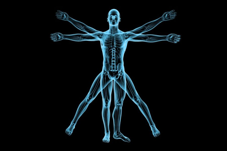CB2 Receptor, Inflammation, Medical Cannabis, Multiple Sclerosis, Alzheimers, ALS, Arthritis