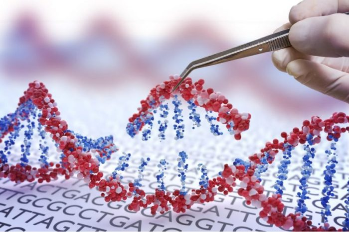 doctor testing DNA double helix which is in your genes