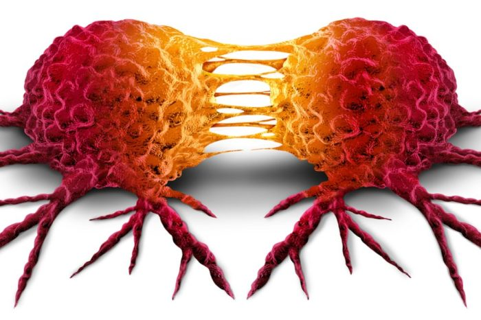 tumor cell replicating itself