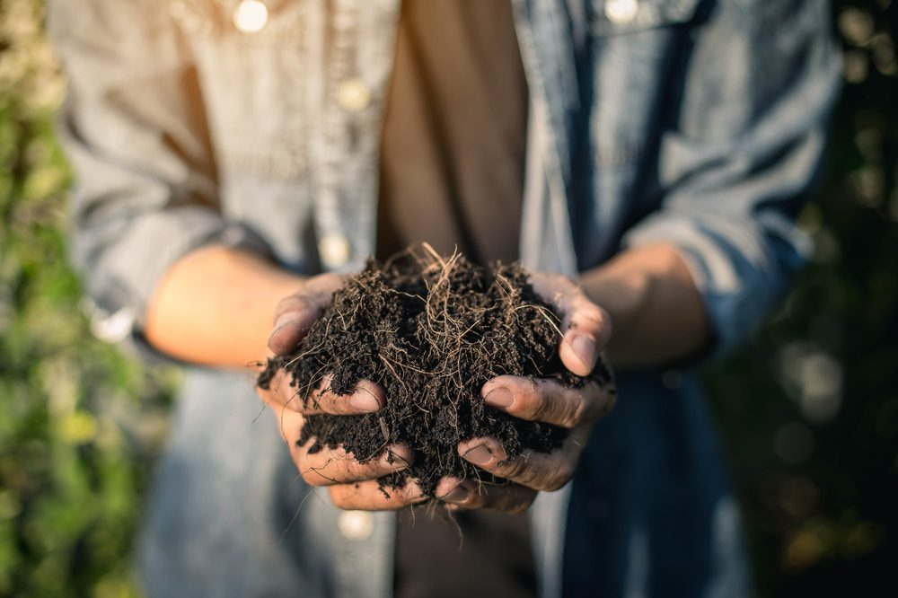 living soil in gardener's hands