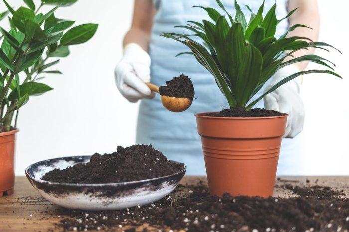 living soil in gardener's scoop