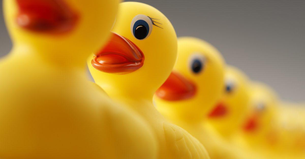 standardized medicine ducks in row
