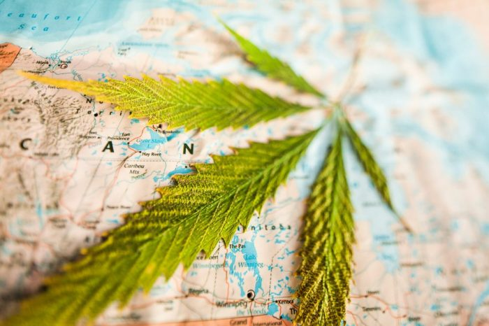 CANADIAN CANNABIS MARKET represented by a cannabis leaf over a map of the country