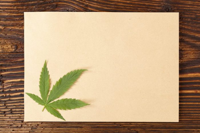 Hemp Paper with hemp leaf