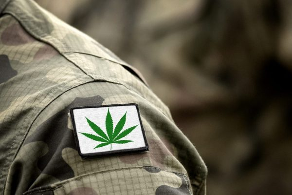 veterans and cannabis represented by cannabis shoulder patch