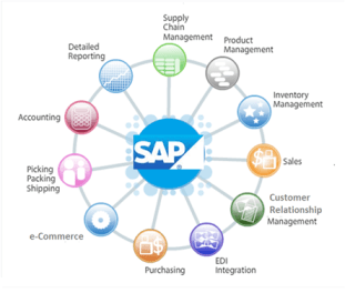 sap-erp-graphic