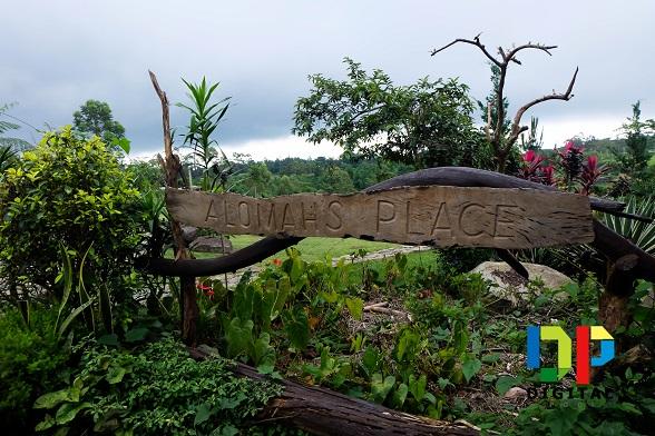 Alomah's Place