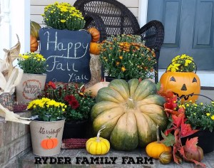 A Southern Illinois porch adorned  with Ryder Family farm grown mums and pumpkins.