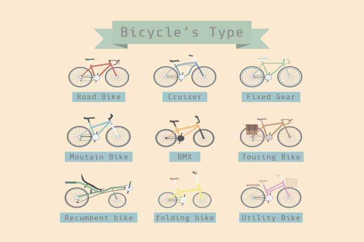Beginner's Guide to Bike Types | What Type of Bicycle Should I Buy?