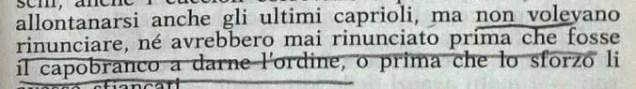 Gianni Padoan - Il Branco Della Rosa Canina - pag. 97