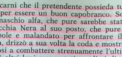 Gianni Padoan - Il Branco Della Rosa Canina - pag. 148