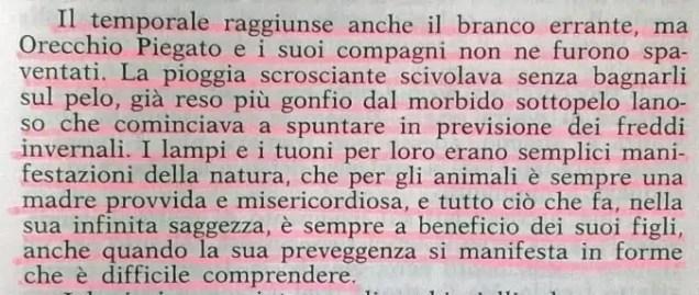 Gianni Padoan - Il Branco Della Rosa Canina - pag. 197