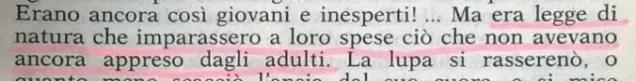 Gianni Padoan - Il Branco Della Rosa Canina - pag. 209
